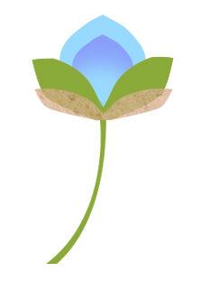 BlumeBlau